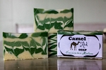 Camel Milk Soap-Cucumber Melon