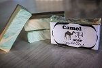 Camel Milk Soap- Yacht Club